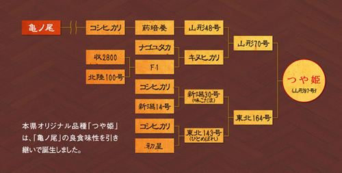 m_77no190_fukeizu.jpg