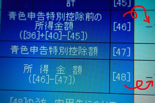 47.JPG